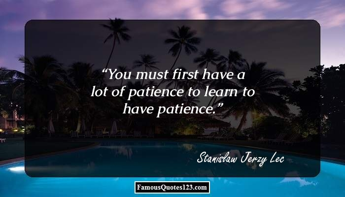 You must first have a lot of patience to learn to have patience.
