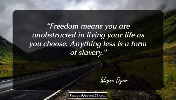 Freedom means you are unobstructed in living your life as you choose. Anything less is a form of slavery.