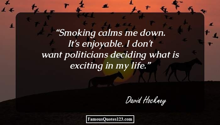 Smoking calms me down. It's enjoyable. I don't want politicians deciding what is exciting in my life.