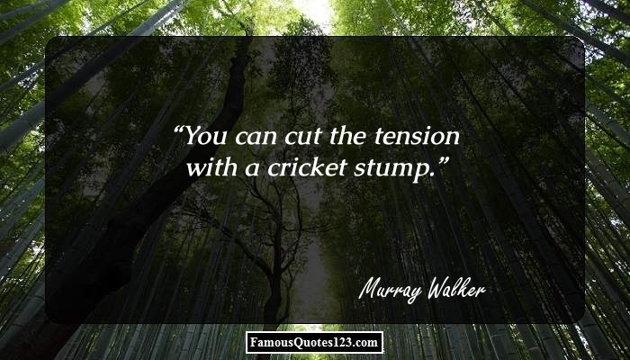You can cut the tension with a cricket stump.