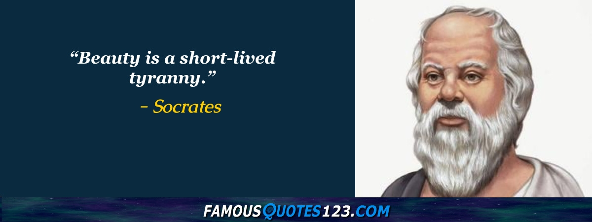 Appearance Quotes   Famous Look Quotations & Sayings
