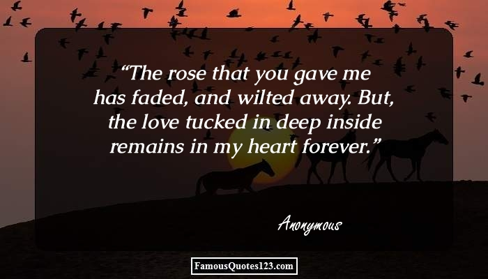 The rose that you gave me has faded, and wilted away. But, the love tucked in deep inside remains in my heart forever.